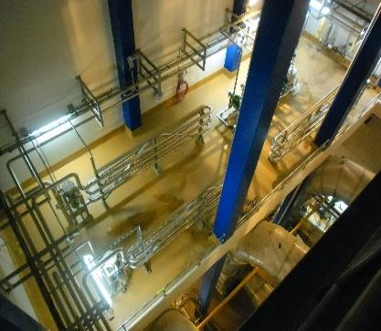 Sureshield applied to dairy process hygiene area